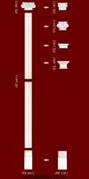 Код товара ПЛС 0951  Гипсовая пилястра в сборе.Состоит из элементов :база ПБ0951(1шт),тело пилястры ПТ0951(2шт),капитель ПК0952.  Высота комплекта 2350мм.  Розничная цена элементов составляет 470 грн.